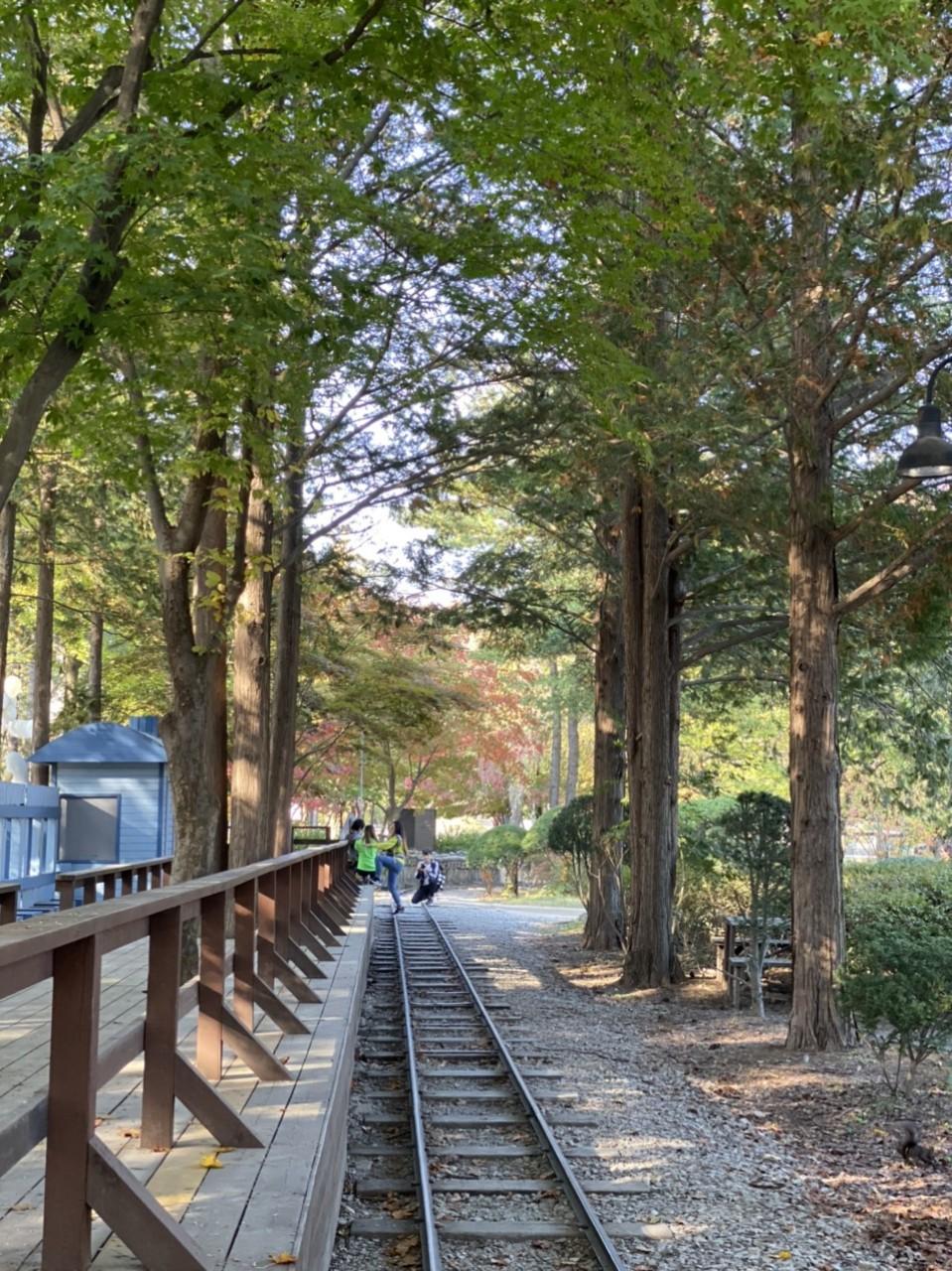 Tour du lịch Hàn Quốc 14
