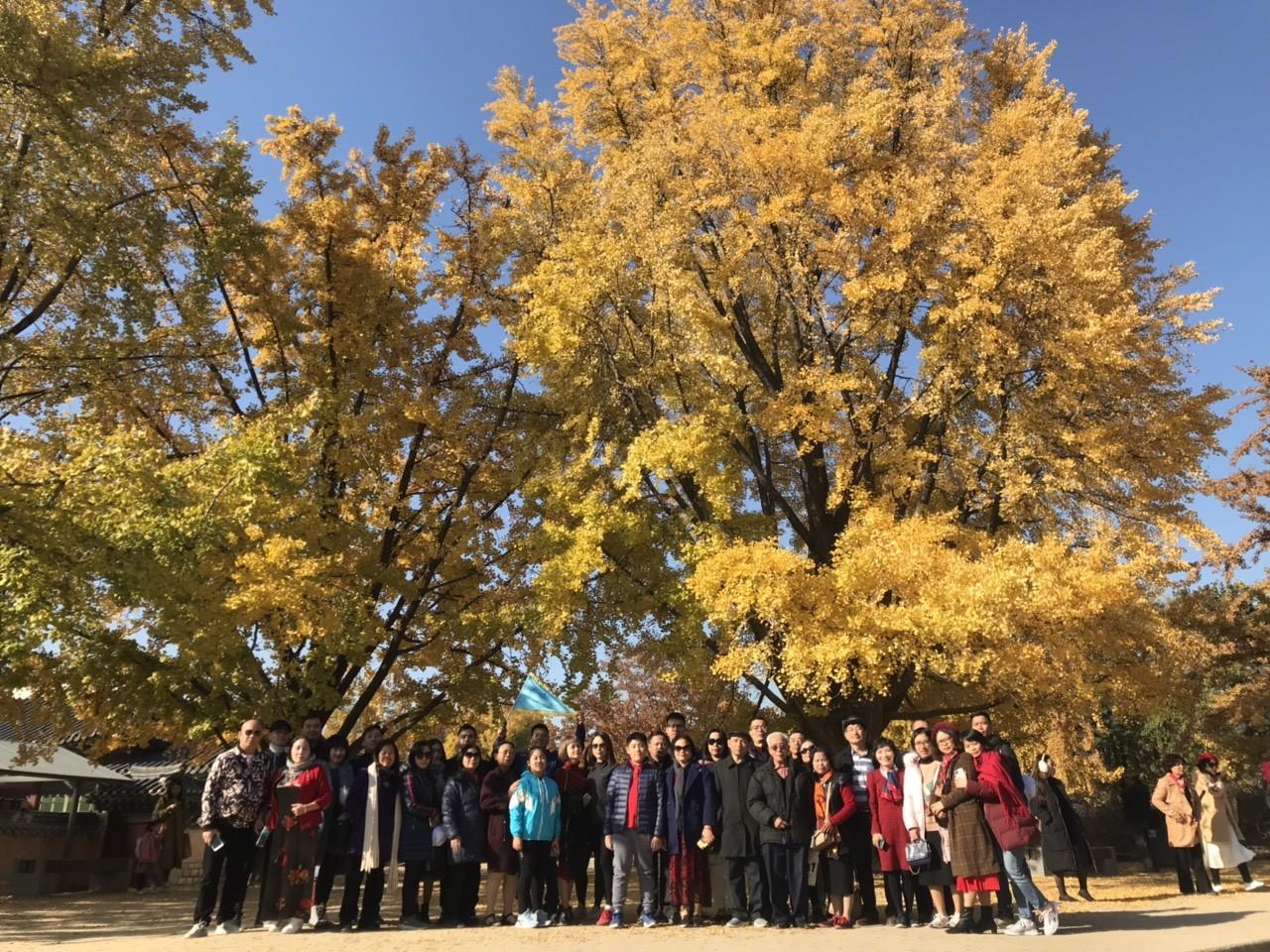 Tour du lịch Hàn Quốc 17